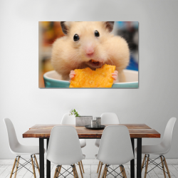 Хомяк и чипсы