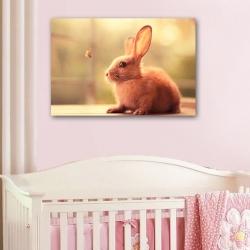 Кролик и бабочка