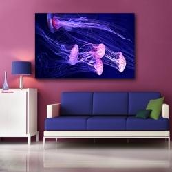 Медузы II